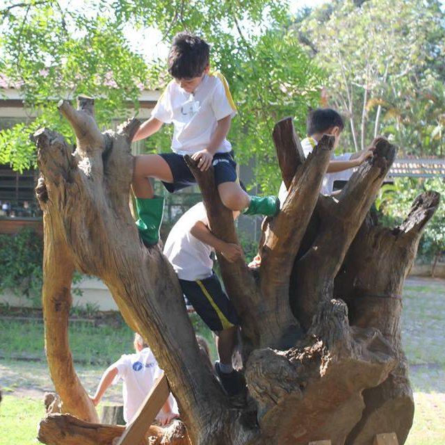 19/04 – Folha: Escolas Começam A Enfrentar Déficit De Natureza