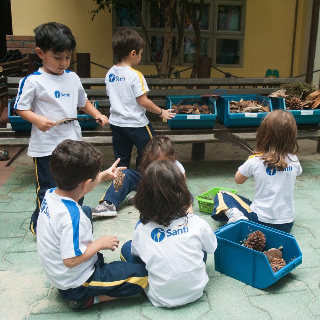 Como A Natureza Contribui Para O Desenvolvimento Das Crianças